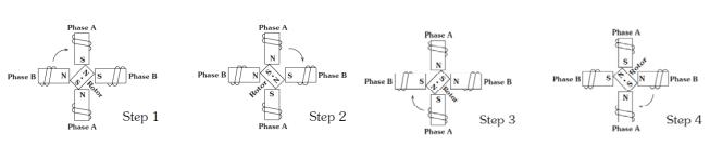Fundamentals of operation of stepper motor